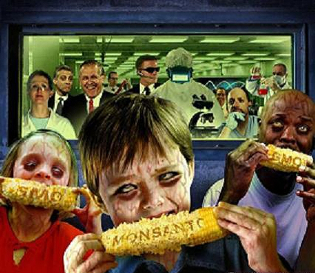 gmo-cause-cancer