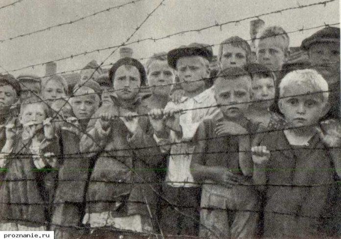 genocid slovena